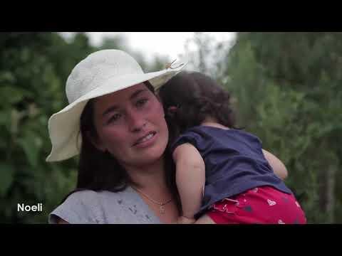 Despejo em Pinhão - vinte famílias expulsas de suas casas