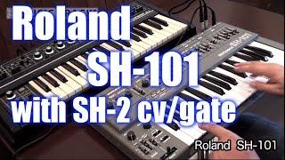 Roland SH-101 Analogowy Syntezator