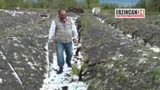 Erzincan'da Etkili Olan Dolu Yağışı, Tarım Ürünlerine Zarar Verdi