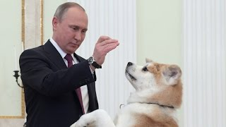 getlinkyoutube.com-'She is being a guard dog' - Putin jokes as his pet barks at Japanese journalists