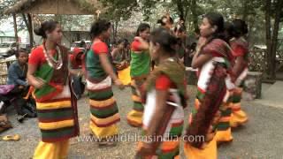 Dimasa-Kachari women dancers