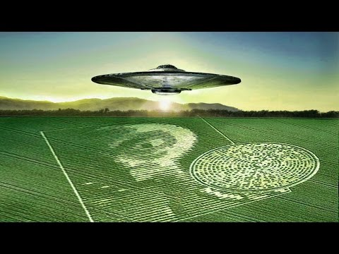 Scientist Claims Crop Circles Are Messages From ALIENS and TIME TRAVELERS