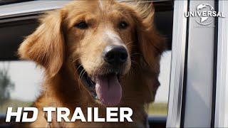 getlinkyoutube.com-Quatro Vidas de Um Cachorro - Trailer 1