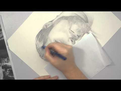 Portrait Drawing for Beginners - Part 4 - Blending