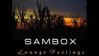getlinkyoutube.com-Sambox - We Can Fly