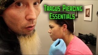 getlinkyoutube.com-Tragus Piercing Essentials- THE MODIFIED WORLD