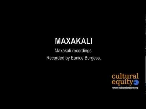 Parlametrics: Maxakalí