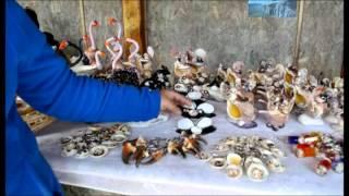 getlinkyoutube.com-Artesanía en Conchitas