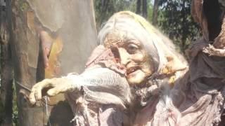getlinkyoutube.com-A bruxa que foi encontrada amarrada nas Árvores