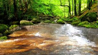 getlinkyoutube.com-Relaxing Sounds of Water Stream 60mins (The Sounds of Nature)