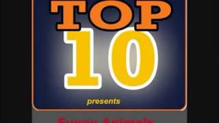 getlinkyoutube.com-Top 10 Funny Animals 2013