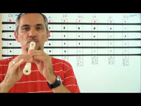 Aula de Flauta Doce I