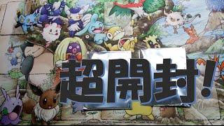 開封☆必見!超開封動画!ポケモンカードゲームXY BREAK