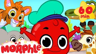 getlinkyoutube.com-Morphle And The Zoo Animals! (+1 hour funny Morphle kids videos compilation)