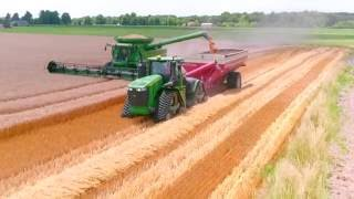 getlinkyoutube.com-C&G Farms 2016 Illinois Wheat Harvest