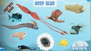 getlinkyoutube.com-Deep Blue - Animal Jam Journey Book Cheat Guide