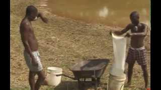 getlinkyoutube.com-ABC of Fish Farming. Fish Farming in Nigeria using earthen ponds.