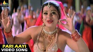 Andhrudu Songs   Pari Aayi Video Song   Gopichand, Gowri Pandit   Sri Balaji Video