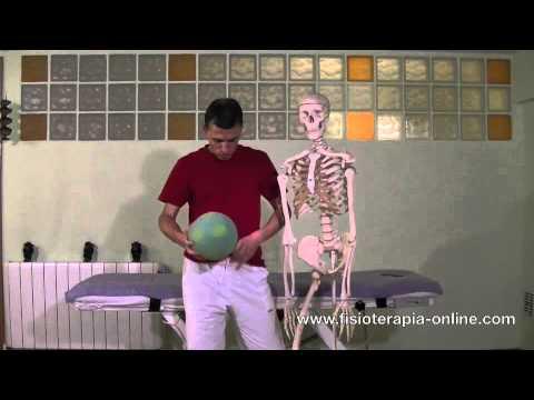Auto - masaje abdominal y visceral con pelota de espuma