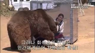 [Real Test] 곰과 조우했을 때 대처법