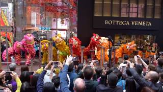 getlinkyoutube.com-Hong Kong Chinese Lunar New Year 2017 - Lion Dance Performance @ Causeway Bay SOGO