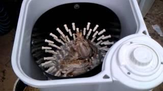 getlinkyoutube.com-Перосъемная машинка для перепелов