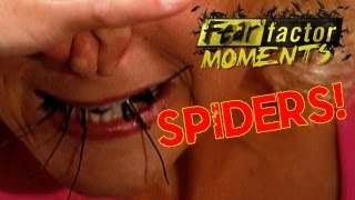getlinkyoutube.com-Fear Factor Moments | Roulette Spider Eating