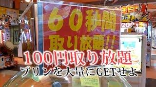 UFOキャッチャー 100円60秒とり放題でプリンをGETせよ