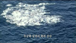 getlinkyoutube.com-2014 애국가 KBS