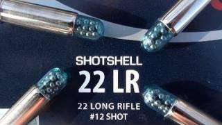 getlinkyoutube.com-.22 LR CCI Shotshell