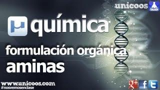 Imagen en miniatura para Química orgánica: AMINAS