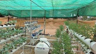 getlinkyoutube.com-لطلب نظام الزراعة المائية وصناعته وتركيبة