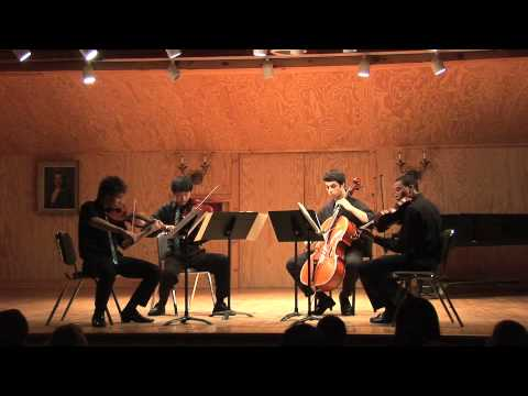 "Schubert, String Quartet No 14 in D Minor D 810  Presto, ""Death and the Maiden"".mov"