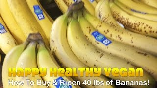 getlinkyoutube.com-How To Buy & Ripen 40 lbs of Bananas!