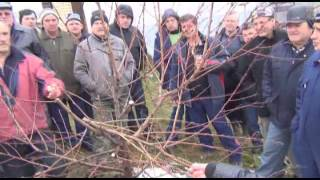 getlinkyoutube.com-Rezanje voća, Donji Klakar, Brod 2013