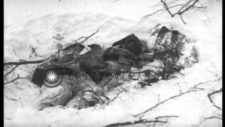 getlinkyoutube.com-Dead German soldiers half buried in snow in Ambleve, Belgium during World War II. HD Stock Footage
