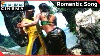 Thotti Gang Movie || Vechhani Vechhani Deham Video Song || Prabhu Deva, Gajala,