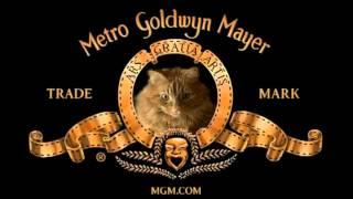getlinkyoutube.com-MGM Cat