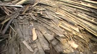 getlinkyoutube.com-Как напилить дрова.