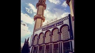 getlinkyoutube.com-► Cheikh Zawali - 3amar Wa Arwah ♫