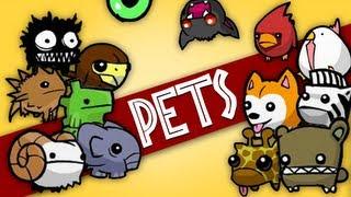 getlinkyoutube.com-Castle Crashers - Como pegar todos os pets (how to get all pets)