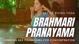 getlinkyoutube.com-Yoga Bhramari Pranayama