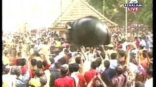 getlinkyoutube.com-Elephant collapsed-Thrissur pooram'10