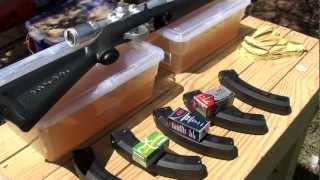 getlinkyoutube.com-What is the most effective .22 LR round?