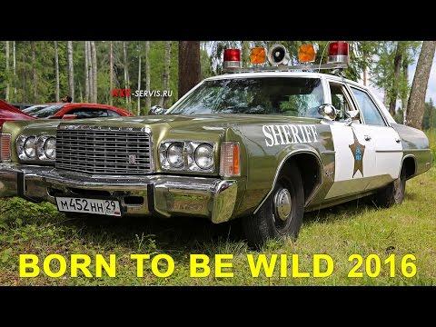 Автомобильный фестиваль Born to be wild 2016