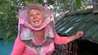 Лечение рака. Продукты пчеловодства