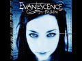 Evanescence, Bring Me to Life (with lyrics, look in info)