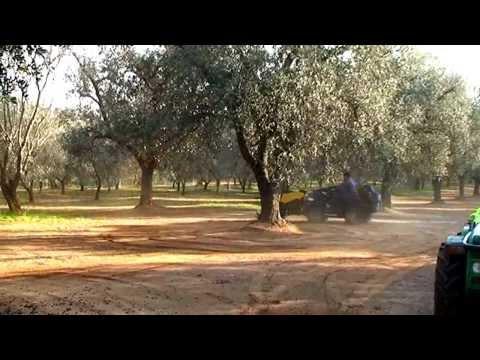 raccoglitrice macchina raccolta olive hdr 170 Agrimaglie.avi