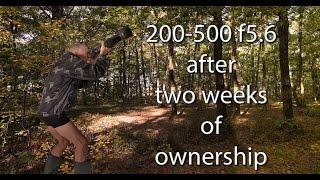 getlinkyoutube.com-Nikon 200-500 f5.6  Two weeks later
