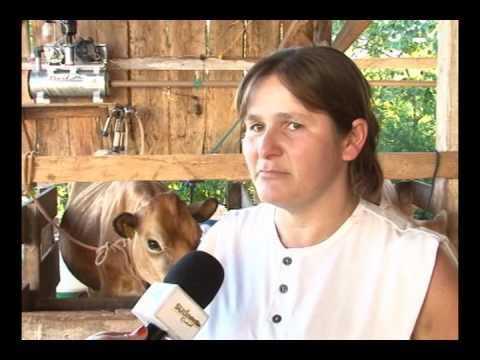 Sudoeste Rural   15  programa   Matéria Ordenhadeiras Planalto